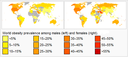 Obesity prevalence among males and females