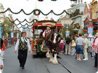 Main Street USA horse-drawn trolley.