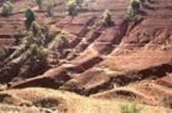 Soil Erosion: Causes And Solution
