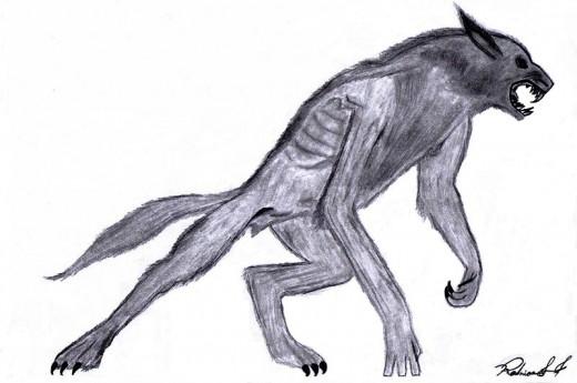 Artist's rendering of a werewolf.