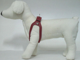 Using a harness that avoids the dog's neck can prevent problems with choking and collapsing trachea.