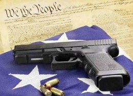 "The Constitution ""Provides for the Common Defense"""