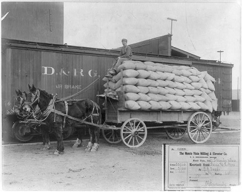Horse-drawn wagon loaded with 175 sacks of wheat beside freight car