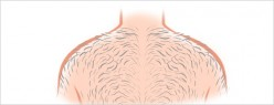 How to Shave Your Back for Men (Illustrated)