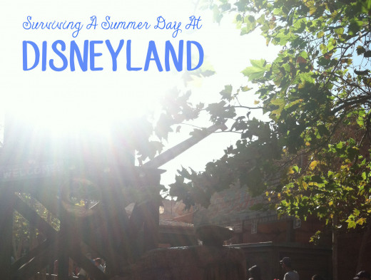 How to survive a Summer day at Disneyland!