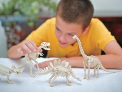 Mineral Rock and Fossil Kits for Kids