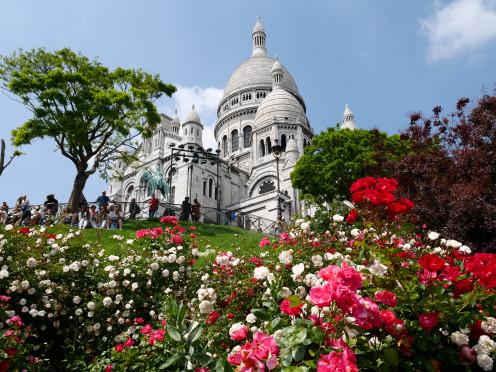 Sacré Coeur and some wonderful roses