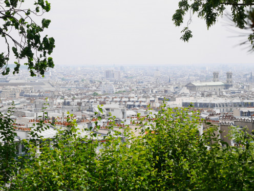 A lot of chimney pots on the roofs of Paris