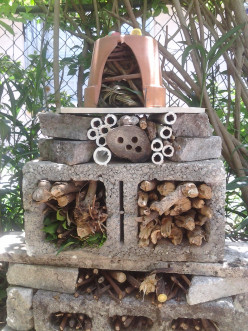 Make an Insect Hotel to Attract Bugs to Your Yard