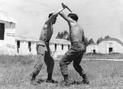 What is the best martial art to learn for self defense?