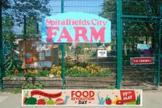 Find out how you can become a city farmer