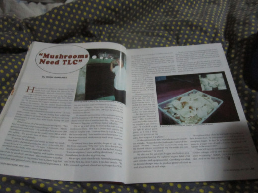 two page spread article