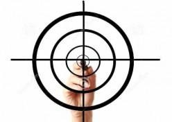 The Targeted Individuals Phenomenon