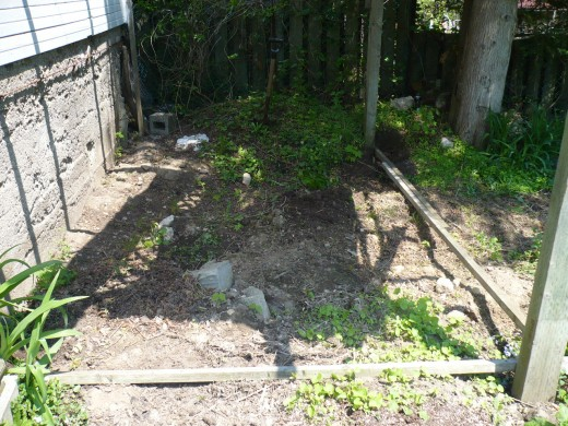 We leveled this area and began framing the raised vegetable garden to the 4x4 posts of the old rabbit pen.