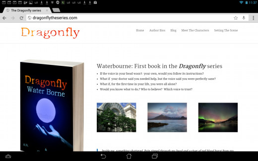 A simple site built using wordpress, but still very effective. The page includes a signup form below the pictures so readers can learn when the next book or short story is released.