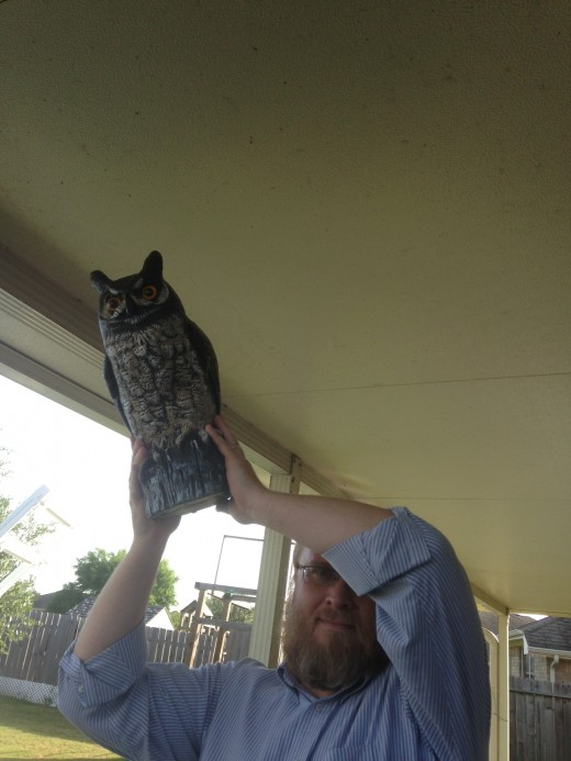 Defend against intruders with a scary owl!