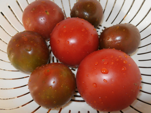 Nothing tastes better than your own home grown tomatoes and other vegetables.