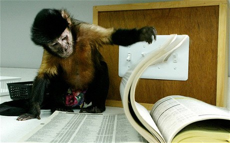 Fig.2. This picture shows how a Capuchin monkey's small hands allow it to turn pages in a book (Bourg).