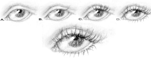 how to draw eyelashes for beginners