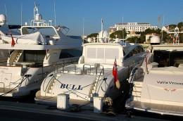 Bernie's Yacht, Bull