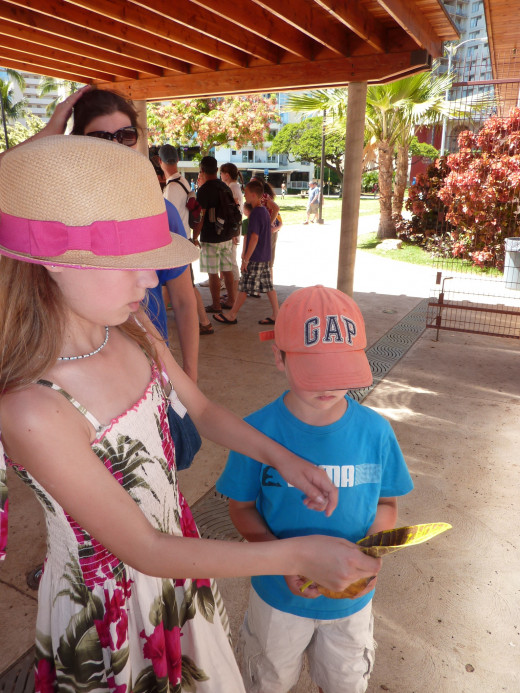 After a long walk to the zoo from Waikiki.  Navigating Waikiki by foot takes a little pre-planning and age appropriate discretion.