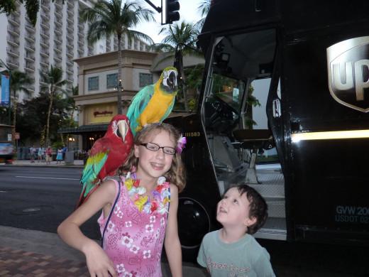 The Waikiki experience.