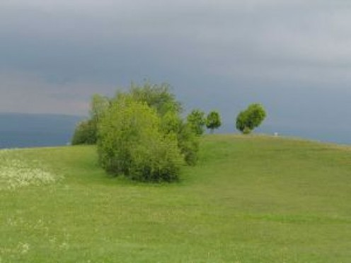 A green hillock like where the cemetery existed