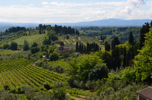 Tuscany from Tony DeLorger