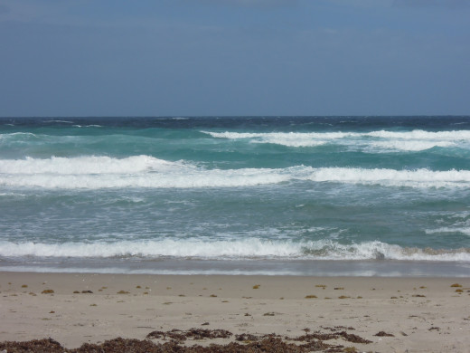 The beaches of Florida, and oh the waves.