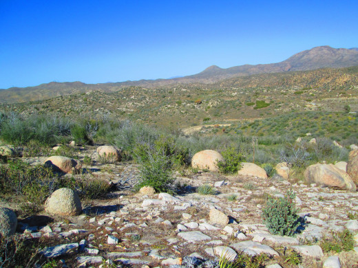 I love the shadows that the boulders and the chaparral caste on the ground in the late afternoon.