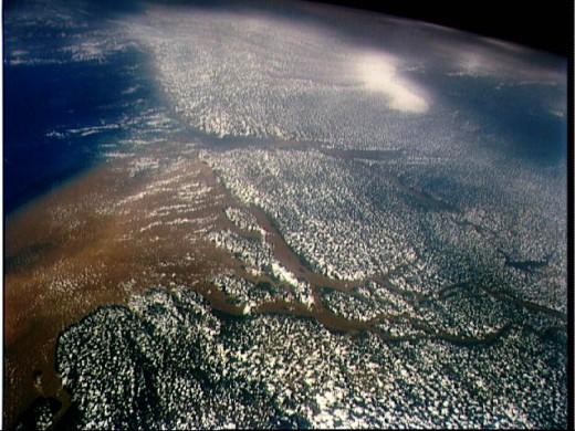 Satellite Image of the Amazon River Delta