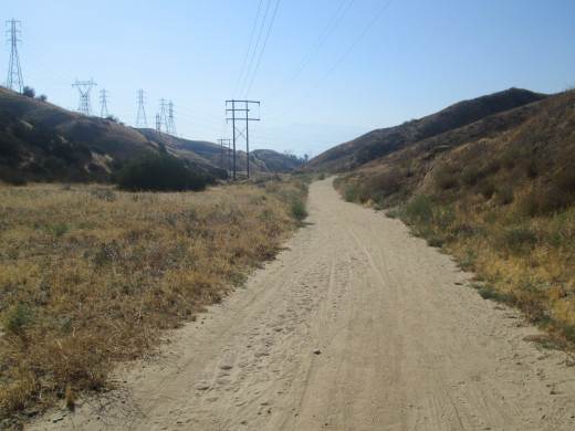 The main trail is wide and can accommodate a great deal of foot and bike traffic heading up and down.