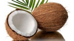 What is the Difference between Plain Coconut Oil and Virgin Coconut Oil?