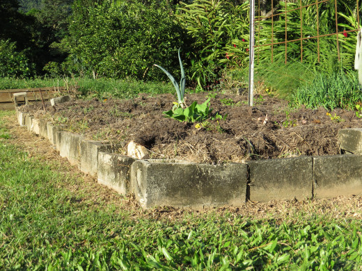 Vegetable Garden border using concrete masonry blocks