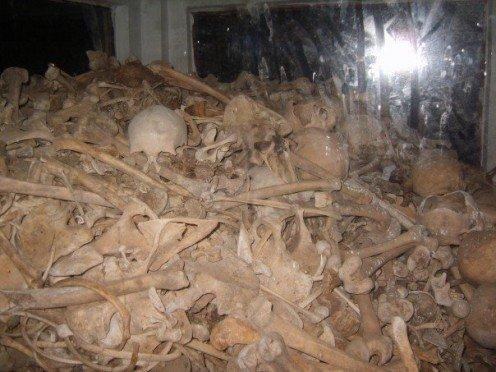 Some of the skulls and bones gathered from the floor of the cave.