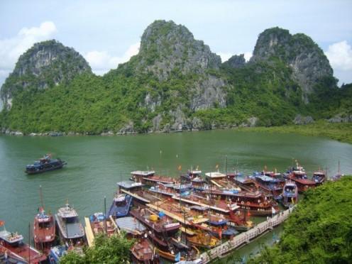 Cruise boats in Halong Bay