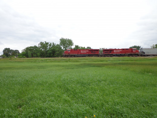 Canadian Pacific train rolling in to pick up farmers' grain.