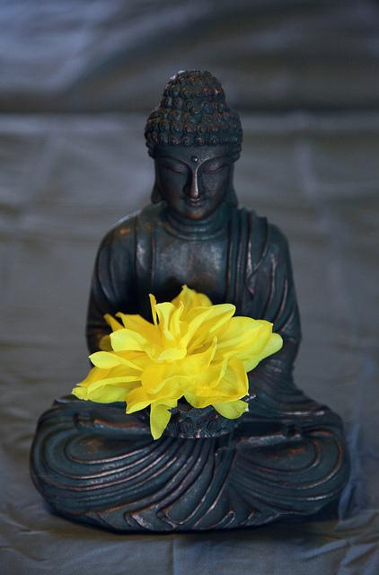 """Meditation brings wisdom; lack of meditation leaves ignorance."" - Buddha"
