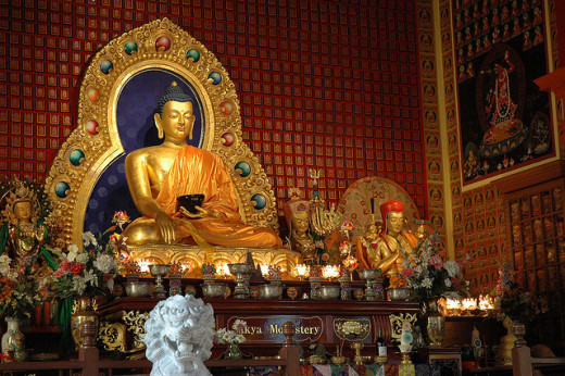 The Buddha Was A Dog In One Of His Incarnations