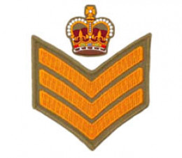 Warrant Officer 2/Staff Sergeant Insignia