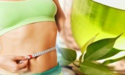 Green Tea and Weight Loss - Why?