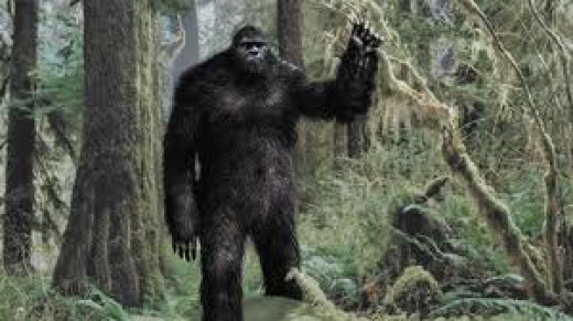 Famous Mythical Creature: Sasquatch