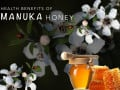 What is Manuka Honey and its Health Benefits?