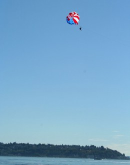 View of a natural high - Seattle Hempfest, 2013. Image Copyright: Misfit Chick