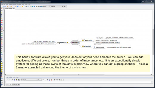 FreeMind is a great free tool that helps you do just what it says - free your mind from chaos and get organized!
