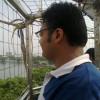 jainvaibhav profile image
