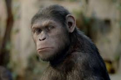 Dawn Of The Planet Of The Apes Review...