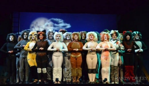 The cast of CATS at Albuquerque Little Theatre.