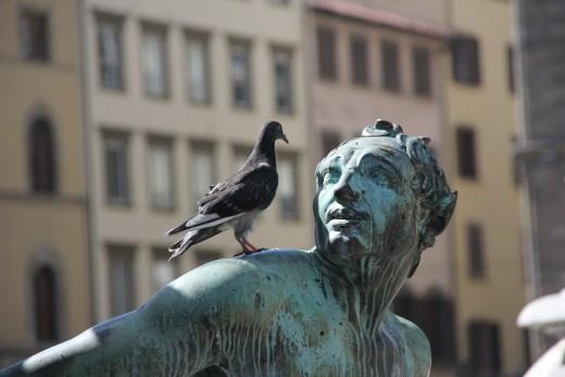 Pigeon Meets Statue