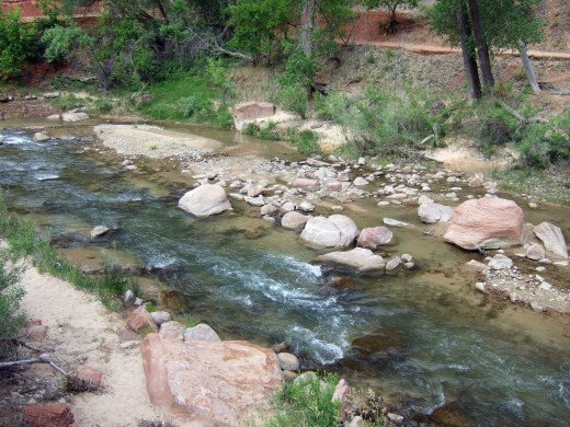 The mature flowing river through Zion National Park.